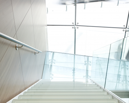 Large stair at Boréal in Brussels